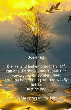Prayer Quotes, Faith Quotes, Evening Greetings, Evening Quotes, Good Night Blessings, Afrikaanse Quotes, Goeie Nag, Angel Prayers, Good Night Sweet Dreams