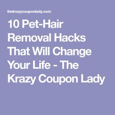 10 Pet-Hair Removal Hacks That Will Change Your Life - The Krazy Coupon Lady