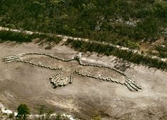 Bunjil - Australia - Andrew Rogers, Sculptures, Land Art and Artist