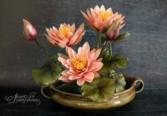 Water Lilies by Sweet Symphony