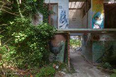 Roa Factory, België, graffiti, urbex, verlaten, abandoned, lost place, urban exploration