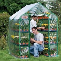 Greenhouses  Accessories - Patio Growhouses & Cold Frames - Garden Starter Greenhouse