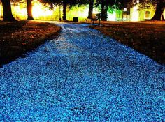 Glow in the dark paint has so many uses–like giving your house the most talked about curb appeal on the block! The geniuses at Proteq have created Starpath, a spray material enriched with luminous particles that can be applied to any pavement surface. From Our Blog at Design Connection, Inc. | Kansas City Interior Design http://designconnectioninc.com/blog/design-inspiration/light-up-the-night-our-favorite-outdoor-lighting-options #OutdoorLighting #GlowInTheDarkPaint #InteriorDesign