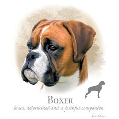 BOXER UNCROPPED dog fabric Large Picture on by TheLonesomePet, $13.99