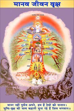 Seven Days Course Photo Gallary Brahma Kumaris Meditation, Rajyoga Meditation, Lord Photo, Believe In God Quotes, Krishna Love, Lord Krishna, Tree Of Life Art, Hindu Deities, Hinduism