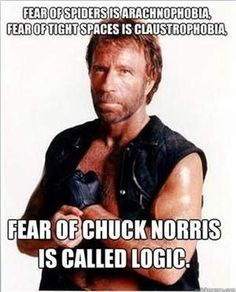Fear of Chuck Norris is Called... is listed (or ranked) 15 on the list The 50 Funniest Chuck Norris Jokes of All Time