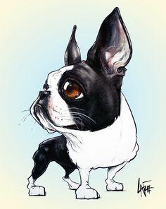 Boston Terrier #1 Drawing  - Boston Terrier #1 Fine Art Print