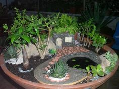 Photo Idea -- Miniature Garden by Elena.   This is just one of the many fairy gardens by Elena... The next several pins are from http://minigardener.wordpress.com/ -  be sure and visit the site many more ideas in creating your own fairy garden.