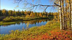 Media preview Johanna Suomela @JohannaSuomela Bright autumn colours by the river. #Kemijoki #Savukoski #FinnishLapland @OurFinland pic.twitter.com/dCKycgUrhE (scheduled via http://www.tailwindapp.com?utm_source=pinterest&utm_medium=twpin&utm_content=post12673480&utm_campaign=scheduler_attribution)