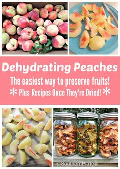 Dehydrating Peaches (and recipes!)