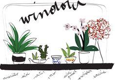 #illustration #MLC #my window #plants #flowers http://letiziamlc.tumblr.com/