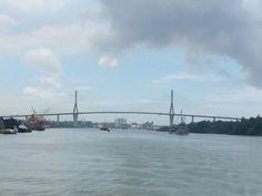 Puente #tampico