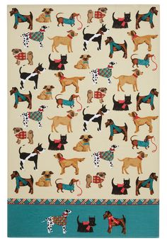 This fun cotton tea towel in a Hound Dog design features colourful images of dogs in coats and scarves. Produced from cotton, this fun, colourful design has a contrast plaid and turquoise border. Fun gift for the dog lover. Hound Dog Breeds, Terrier Breeds, Terriers, Dish Towels, Tea Towels, Irish Design, Dalmatian Dogs, Like Animals, Cotton Towels