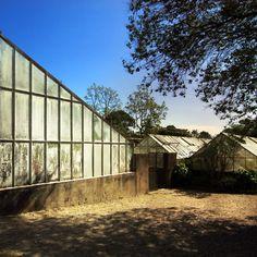 Jardim Botânico  (Casa Andresen), local muito interessante na cidade do Porto