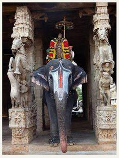 Srirangam Ranganathar Temple-Tamilnadu-India Om Namah Shivaya, Ganesh Photo, Indian Arts And Crafts, Jain Temple, Lord Vishnu Wallpapers, Indian Colours, Shiva Statue, Hindu Festivals, Elephant Art