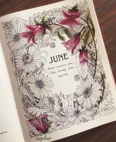 """""""Warm summer sun shine warmly here"""" - Mark Twain Sketchbook Inspiration, Bullet Journal Inspiration, Art Sketchbook, Illustration Botanique, Botanical Illustration, Coloring Books, Coloring Pages, Copics, Prismacolor"""