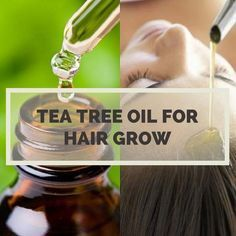 13 Effective  Uses of Tea Tree Oil For Rapid Hair Growth