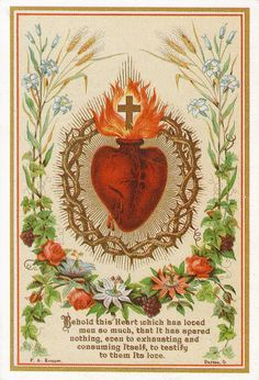 "Today is the Feast of the Sacred Heart, celebrated 19 days after Pentecost. ""Irresistible Novena to the Sacred Heart of Jesus O my Jesus who didst say: ""Indeed I say to you, ask and it shall be given you; Catholic Prayers, Catholic Art, Religious Art, Catholic Gospel, Religious Education, Roman Catholic, Jesus E Maria, Vintage Holy Cards, Religion"
