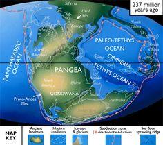"Link to ""Before The Dinosaurs (The Paleozoic Era) http://pinterest.com/amthomas73/before-the-dinosaurs-the-paleozoic-era/"