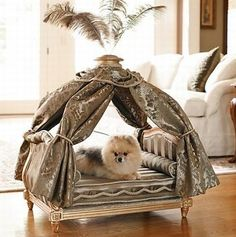 20 Modern Pet Beds, Design Ideas for Small Dogs Diy Dog Bed, Dog Furniture, Antique Furniture, Dog Rooms, Pet Beds, Dog Houses, Diy Stuffed Animals, Fur Babies, Cute Dogs