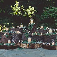 Candle-studded tree stumps