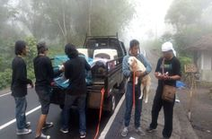 An American woman is determined to rescue dogs who have been left behind a volcano in Bali.