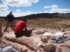 The giant Titanosaur dig site.  Museum plans expansion.