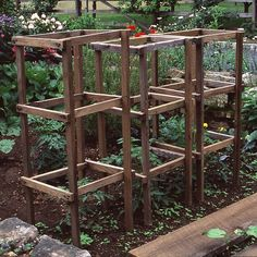 Ladderlike cages constructed from boards make an attractive way to keep tomato growth well behaved. Use rot-resistant wood such as cedar or redwood. Cut the crosspieces all the same length to 18 inches long, depending on the size of cage you prefer Tomato Vine, Tomato Trellis, Tomato Cages, Tomato Plants, Garden Trellis, Tomato Cage Diy, Organic Gardening, Gardening Tips, Urban Gardening