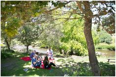 Pre-book your picnic – choose from a variety of options and find your perfect shady spot.  picnics.spier.co.za