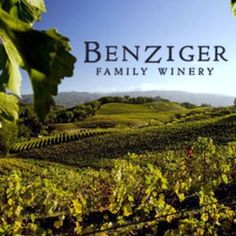 Benziger Winery:  Amazing site!!  So beautiful!!  You can skip all the other vinyard tours and just do this one.  One of the only white wines we brought back- Sav Blanc