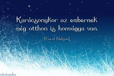 Carol Nelson gondolata a karácsonyi honvágyról. Buddhism, Advent, Einstein, Zen, Humor, Funny, Quotes, Christmas, Ideas
