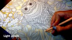 Secret Garden - The Owl (Background Part 1)
