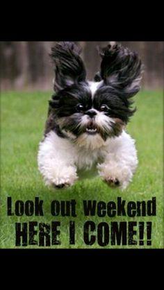 Weekend #happiness