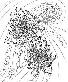 Photo category Chrysanthemum tattoo at number description Chrysanthemum Tattoo Images amp Pattern Coloring Pages, Coloring Pages To Print, Coloring Books, Adult Coloring, Chrysanthemum Wedding Bouquet, Japanese Chrysanthemum, Secret Garden Colouring, Bild Tattoos, Doodle Inspiration