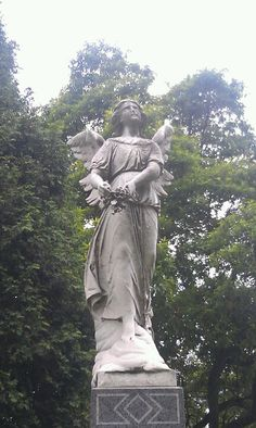 Angel at woodlawn cemetary, Bronx, NY