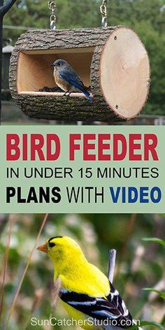 Learn how to make this hanging log bird feeder from a natural log or fallen tree. This homemade DIY bird feeder will attract chickadees nuthatches woodpeckers house finches goldfinches and bluebirds to your yard or garden. Bird Feeder Plans, Bird House Feeder, Diy Bird Feeder, Squirrel Feeder Diy, Best Bird Feeders, Homemade Bird Houses, Homemade Bird Feeders, Bird Houses Diy, Wooden Bird Houses