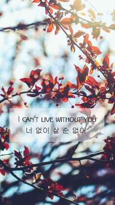 I can't live without you (너 없이 살 순 없어)