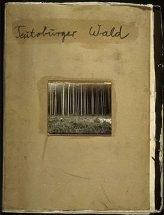 Anselm Kiefer (German, born in 1945), Teutoburger Wald (Teutoburg Forest), 1977, Unique artist's book, illustrated with woodcuts and one black and white photograph