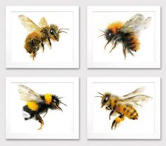 Hey, I found this really awesome Etsy listing at https://www.etsy.com/listing/526583627/honey-bee-bumble-bee-watercolor-set-of-4