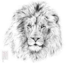 Lionhead by Maruyama-Tyson