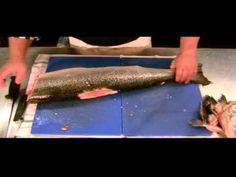 DiY How To Fillet Fish - Fillet Fresh Salmon: PART 1