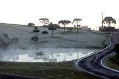Geada na Serra Catarinense