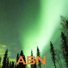 Get notified when the aurora is out! Learn how to view the aurora borealis or northern lights Palmer Alaska, Wasilla Alaska, Visit Alaska, Fairbanks Alaska, Photography Settings, River Lodge, Being In The World, Logo Images, Aurora Borealis