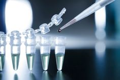 Le cellule staminali potrebbero rappresentare una valida alternativa …