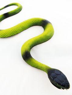 Gardening Snake Stopper Snake Repellent Naturally Drives Snake From Yards Garden Patios Sheds