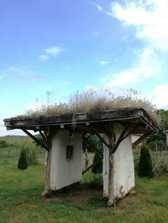 Straw construction in Mátraballa