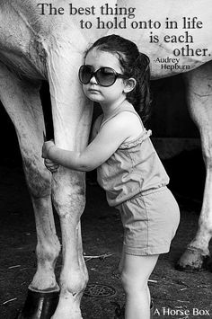 #quote #horse #love