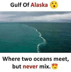 New Nature Photography Ocean Perspective Ideas Amazing Places On Earth, Beautiful Places To Travel, Wonderful Places, Cool Places To Visit, Wow Facts, Wtf Fun Facts, Two Oceans Meet, Interesting Facts About World, Unique Facts