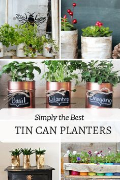 Tin Can Planters:  Tin cans are great for upcycling into herb planters.  You achieve many styles, from colorful, to farmhouse, rustic industrial and glam.