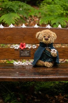 Teddy Bear Pictures, Love Bear, Bear Party, Cute Teddy Bears, Binky, Husband Love, Plushies, Cute Kids, Cartoon